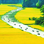 Tam_Coc_river_view