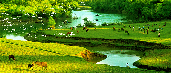 Vietnam_Countryside